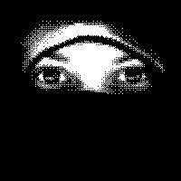 1 Ninja perfil